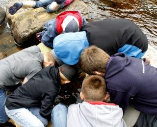 À la découverte des habitants de la rivière Ouelle !