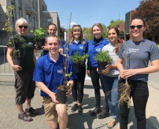 Campagne de distribution de végétaux pour les riverains de la ville de Shawinigan